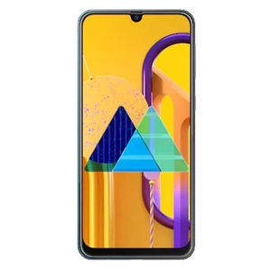 Galaxy M30s M307FN/DS